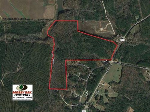 83 Acres of Timber And Hunting Lan : Macon : Warren County : North Carolina