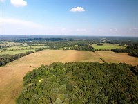 103 Acres of Row Crop Land For Sal : Killen : Lauderdale County : Alabama