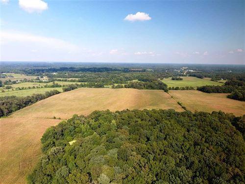 103 Acres of Row Crop Land, Laud : Killen : Lauderdale County : Alabama