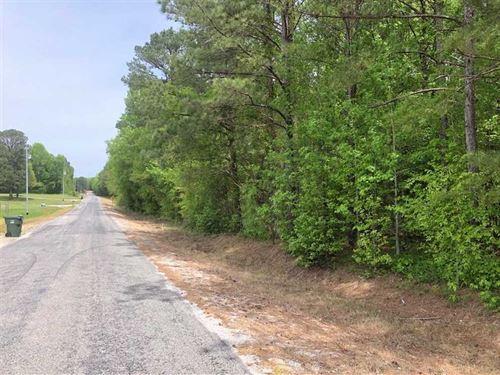 12 Acres, New Bethel Community, CO : Tuscumbia : Colbert County : Alabama