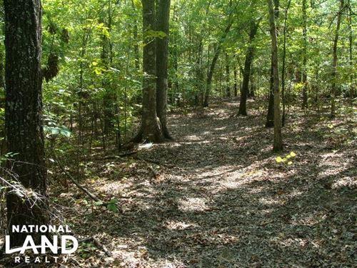 47 Acre Timber & Recreational Pr : Wrightsville : Pulaski County : Arkansas