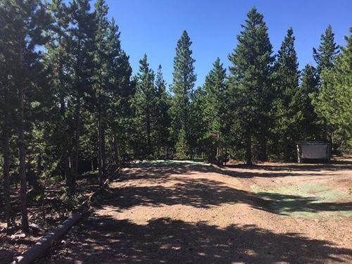 Colorado Rocky Mountain Lot : Red Feather Lakes : Larimer County : Colorado