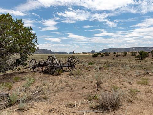 Ranch 8 Miles North Quemado NM : Quemado : Catron County : New Mexico