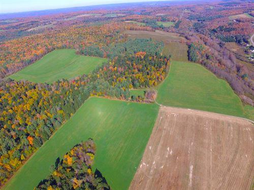 Land For Sale : Bainbridge : Chenango County : New York