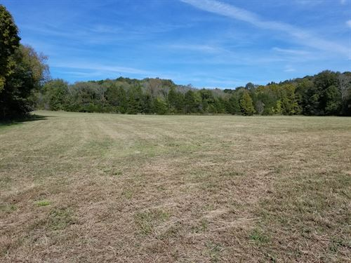 9.35 Ac Residential Land Linden TN : Clifton : Perry County : Tennessee