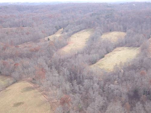 Hunting & Farming Land, Pikeville : Pikeville : Bledsoe County : Tennessee