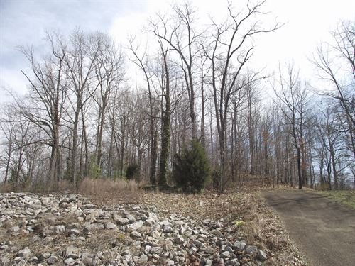 Land Tennessee To Build Home : Selmer : McNairy County : Tennessee