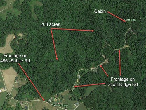 Hunting, Woods, Recreation : Edmonton : Metcalfe County : Kentucky