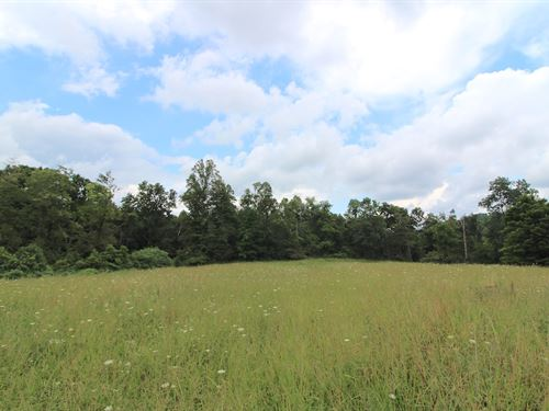 Twp Hwy 249, 38 Acres : Lower Salem : Noble County : Ohio