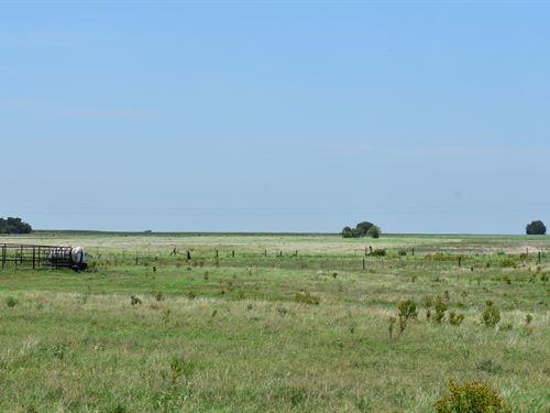 10 Acres Southeast Of Hutto, Tx : Coupland : Williamson County : Texas