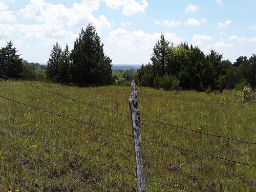 The Perfect Little Farm : Mountain Grove : Wright County : Missouri