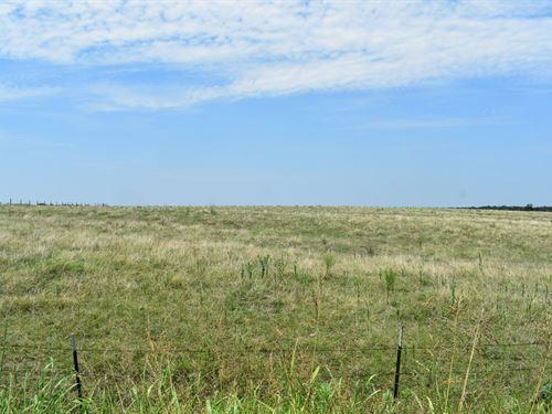 11 Acres In Coupland, TX : Coupland : Williamson County : Texas