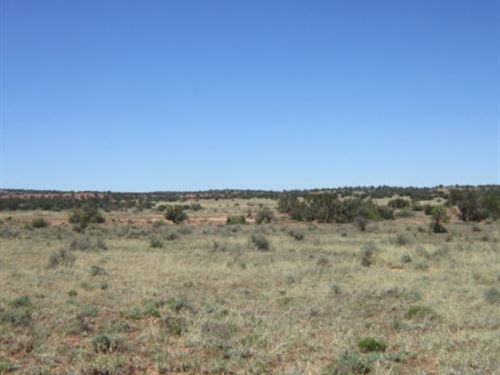 Home, Home On The Range, $65/Month : Snowflake : Navajo County : Arizona