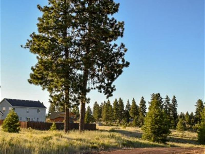 Build Your Dream Home, $249/ Month : Chiloquin : Klamath County : Oregon