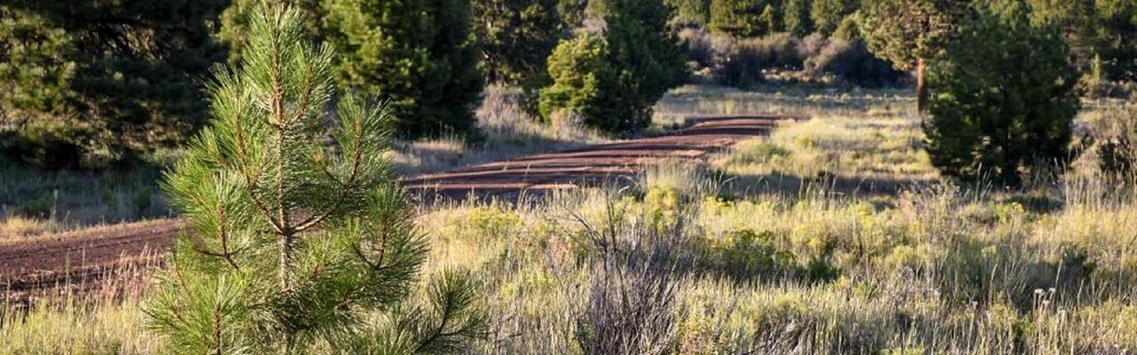 Oregon Rv Land for Sale : LANDFLIP