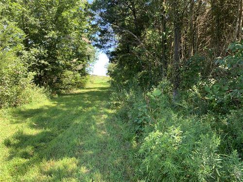 40 Acres St, Clair County Missouri : Osceola : Saint Clair County : Missouri