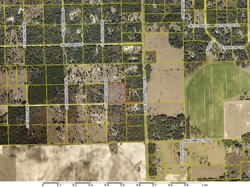 Acreage in Columbia County, FL : Fort White : Columbia County : Florida