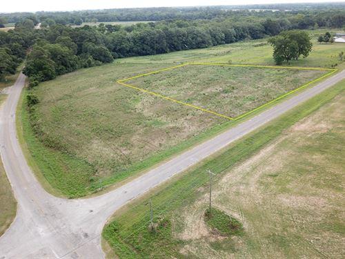 1.5 Acres Hartford, AL County Rd 16 : Hartford : Geneva County : Alabama