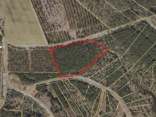 Peaceful Large Lot : Bath : Beaufort County : North Carolina