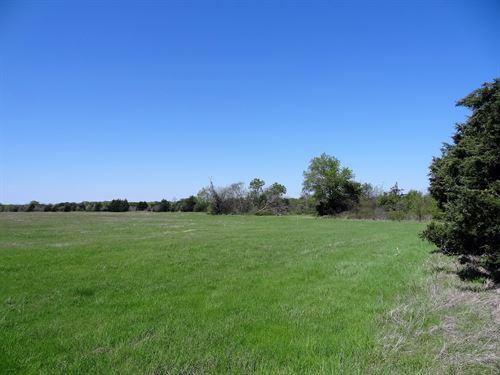 16.31 Acres In Tx, Owner Financing : Wills Point : Van Zandt County : Texas