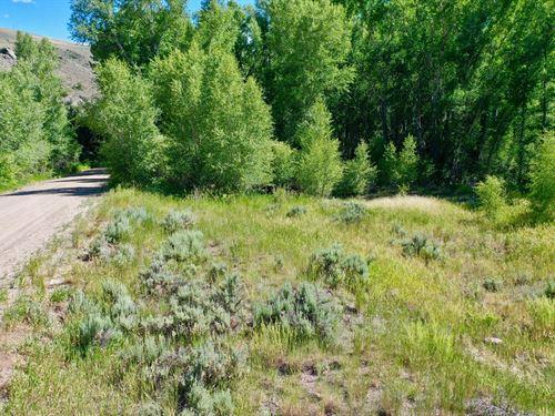 Stream Lot Close To Blue Mesa Lake : Gunnison : Colorado