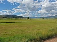 Gunnison / Ohio Creek Valley Lot : Gunnison : Gunnison County : Colorado