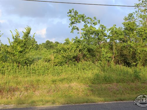 1.12 Acres As You Always Wanted : Alba : Wood County : Texas