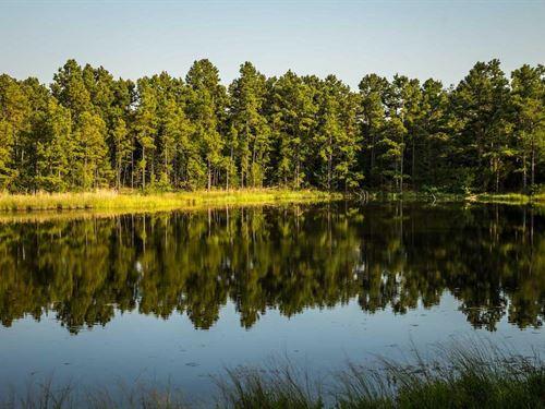 Third Day Ranch : Rattan : Pushmataha County : Oklahoma