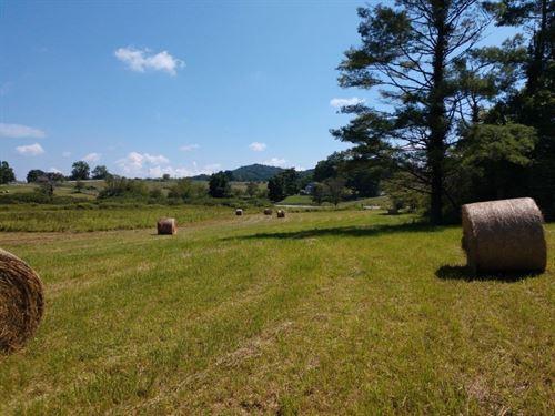 Woods Pasture Land Auction Floyd VA : Floyd : Virginia