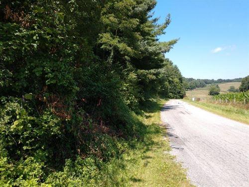 Land at Auction in Floyd VA : Floyd : Virginia