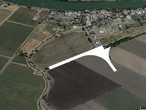 Northern CA Acreage Sacramento : Isleton : Sacramento County : California