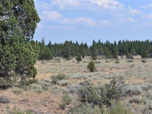 Cameron Rd Recreational Acreage : Beatty : Klamath County : Oregon