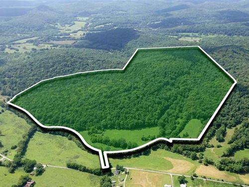 116 Acres in Wilson County TN : Watertown : Wilson County : Tennessee