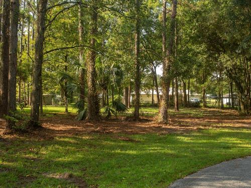 Beautiful 1Ac Lot in Picadilly Park : Lake City : Columbia County : Florida