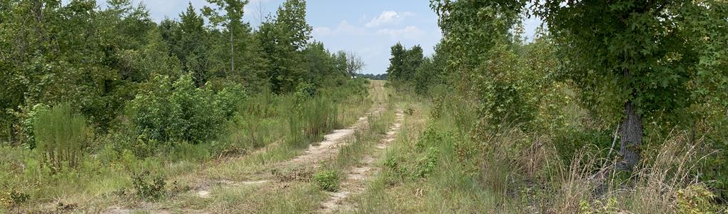 Land For Sale By Owner Near Me >> Land For Sale Acreage Rural Property Investment Property
