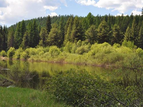 Relaxing Riverfront : Troy : Lincoln County : Montana