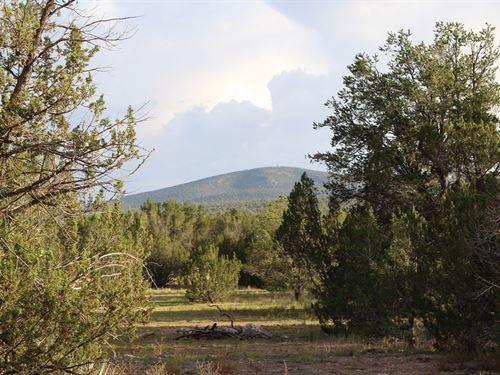 Mountain Property Borders State : Seligman : Yavapai County : Arizona