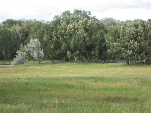 4226890, One Of A Kind : Salida : Chaffee County : Colorado