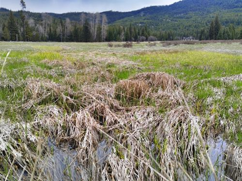163.65 Acres in Thompson Falls, MT : Thompson Falls : Lincoln County : Montana