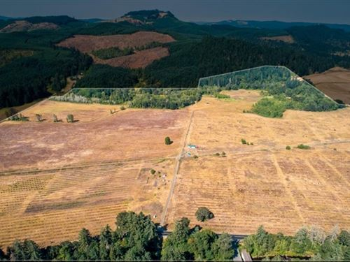 204.87 Acres in Cottage Grove, OR : Cottage Grove : Lane County : Oregon