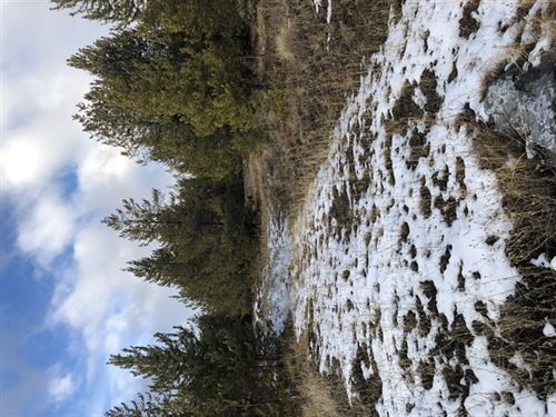 160 Acres in Kalispell, MT : Kalispell : Flathead County : Montana