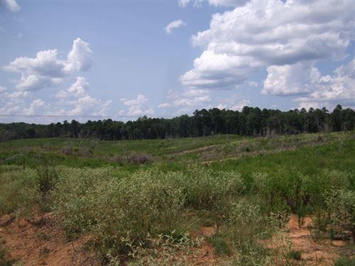 92.35 Acres in Bude, MS : Bude : Franklin County : Mississippi