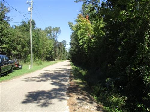 135.22 Acres in Sun, LA : Sun : Saint Tammany Parish : Louisiana