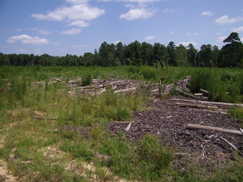 47.27 Acres in Fayette, MS : Fayette : Jefferson County : Mississippi