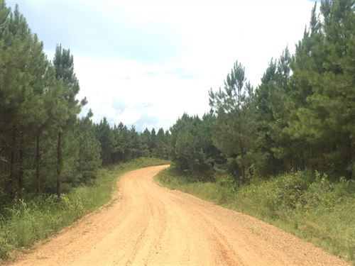 212.68 Acres in Crystal Springs, MS : Crystal Springs : Copiah County : Mississippi