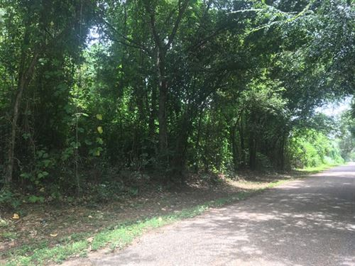 114.80 Acres in Mendenhall, MS : Mendenhall : Simpson County : Mississippi