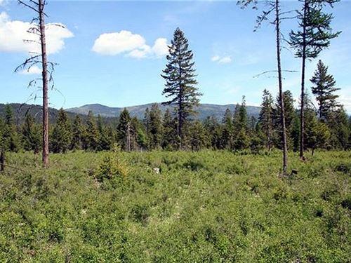 417.85 Acres in Lakeside, MT : Lakeside : Lake County : Montana