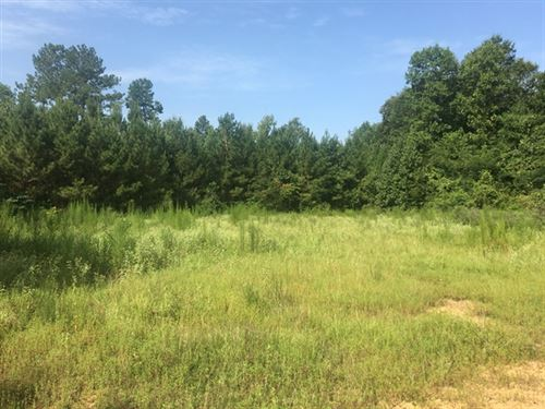 104.33 Acres in Hazlehurst, MS : Hazlehurst : Copiah County : Mississippi