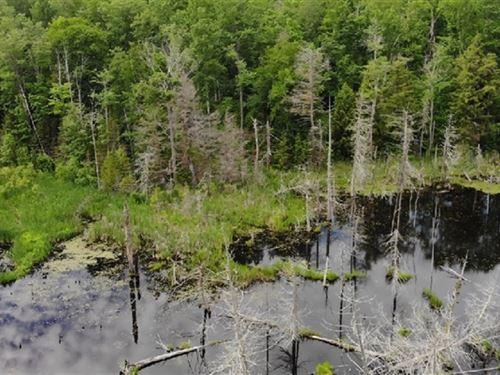 40 Acres in L'Anse, MI : L'anse : Baraga County : Michigan