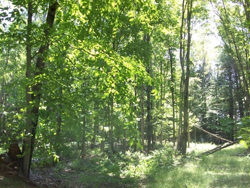 80 Acres in Gladstone, MI : Gladstone : Delta County : Michigan